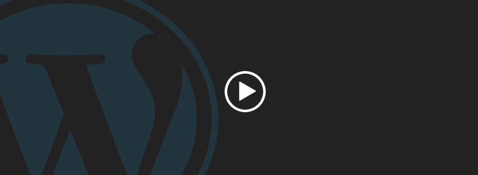 Default WordPress video test.