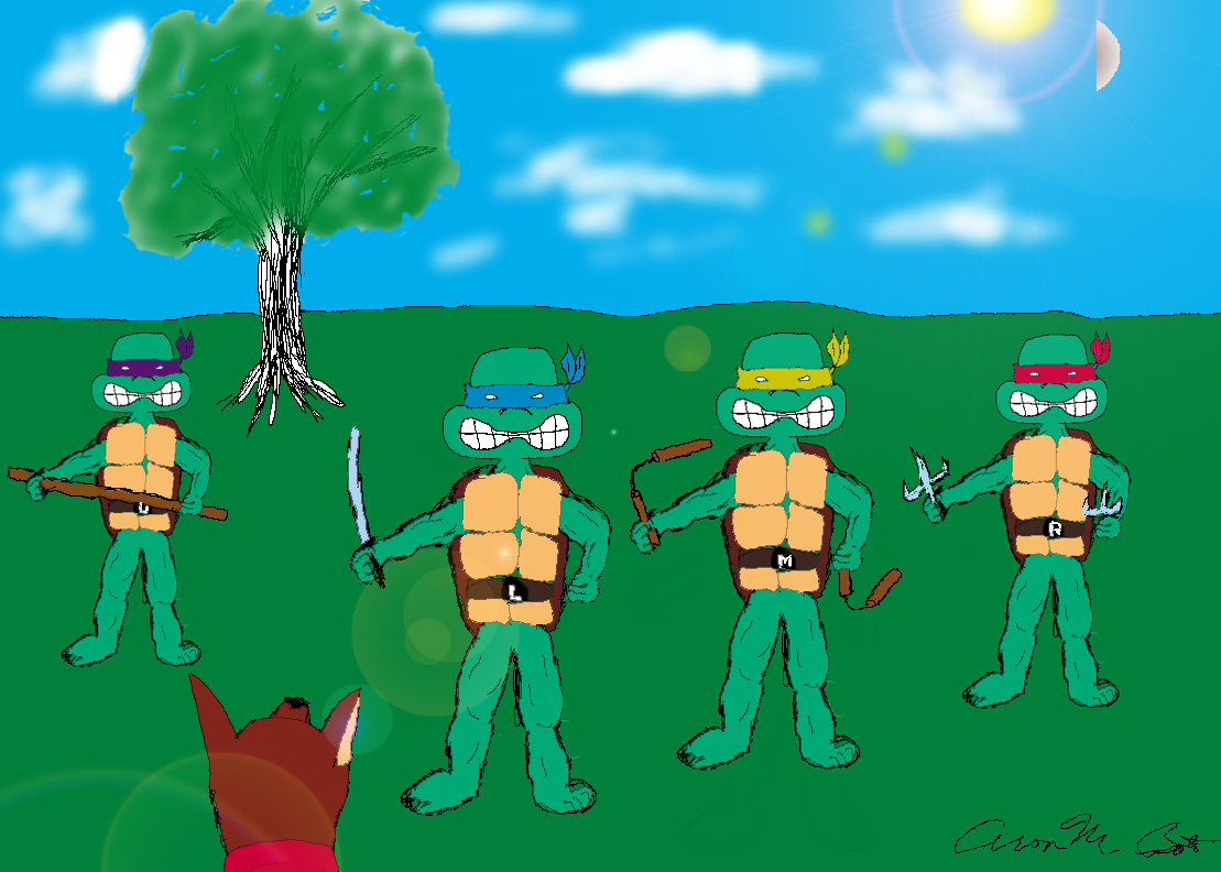 Meme Turtles