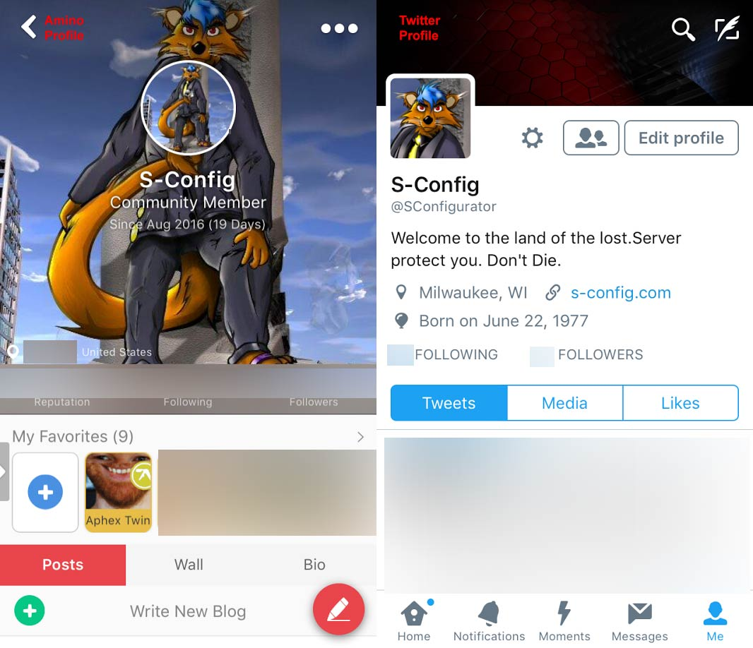 Profile Comparison between Furry Amino and Twitter.